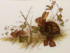Autumn wabbits