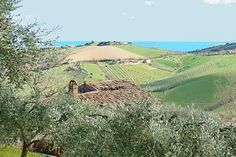 Farmhouse with annexes to restore with sea views in the countryside of Porto San Giorgio, Fermo Province #properties #realestate #luxury #italy #marche