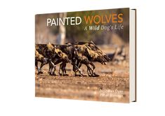 Help save the endangered African Wild Dog by purchasing a beautiful hardcover book of photographs Wolf Painting, African Wild Dog, Wild Dogs, Dog Life, Photographs, In This Moment, Books, Movie Posters, Beautiful