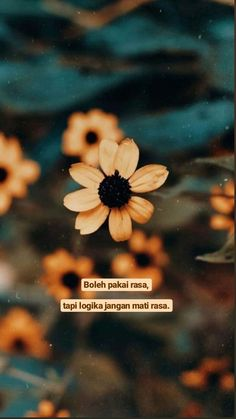 Quotes Rindu, Quotes Lucu, Cinta Quotes, Quotes Galau, Tumblr Quotes, People Quotes, Wall Quotes, Mood Quotes, Life Quotes