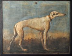 Giovanni Domenico    Greyhound-1793.