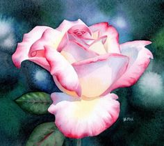 Google Image Result for http://cdn.dailypainters.com/paintings/peace_rose_floral_watercolor_painting_a91fc737552e21b61f804fd53859c27d.jpg