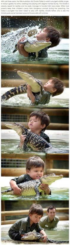 Funny pictures about This generation needs a new Steve Irwin. Oh, and cool pics about This generation needs a new Steve Irwin. Also, This generation needs a new Steve Irwin. Steve Irwin, Reptiles, Funny Animals, Cute Animals, Baby Animals, Haha, Crocodile Hunter, Faith In Humanity, Cute Kids