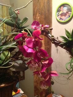 orquideas artificiales