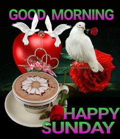 We have 20 good morning quotes for Sunday that will help get your day started right. We hope you have a very blessed day. Good Morning Sunday Images, Sunday Morning Quotes, Happy Sunday Morning, Happy Sunday Quotes, Morning Rose, Good Morning Friends, Good Morning Messages, Good Morning Good Night, Morning Pictures