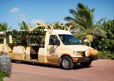 Christmas on Disney's private island paradise, Castaway Cay