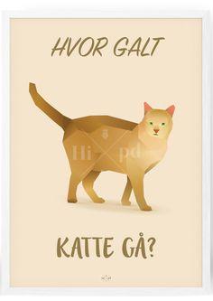 Katte Plakat - Hipd.dk