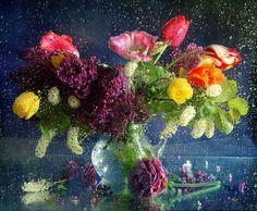 flowers and rain