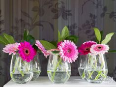 Nice Glasses, Simply Beautiful, Glass Vase, Daisy, Leaves, Pink, Inspiration, Home Decor, Floral Motif