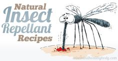 Natural Insect Repellent Recipes for a Bug-Free Summer