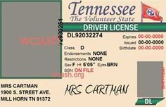 Template Tennessee drivers license editable photoshop file .psd