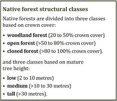Casuarina forest - Department of Agriculture Nitrogen Fixation, Forest Ecosystem, Forest Department, Australian Garden, Woodland Forest, Plant Growth, Growing Tree, Forests, Agriculture
