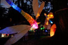 Luminara Festival+Victoria BC