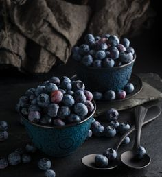 Blueberries | Amy Roth Photo
