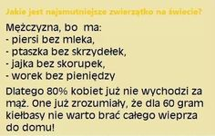 zwierzątko ;) Love Life, My Love, Scary Funny, Keep Smiling, Good Mood, Motto, Sentences, Haha, Funny Quotes