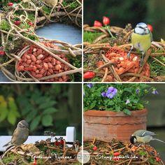 http://stampingmathilda.blogspot.de/2017/11/for-birds_19.html