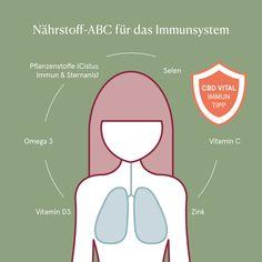 Die Atemwege sowie die beiden Lunge regulieren unsere Atmung auf rhythmische Weise. Um diese in Ihrer Arbeit zu unterstützen gibt es Orthomolekulare Tipps in unserem Nährstoff ABC für das Immunsystem.  So tragen Selen, Vitamin C, Vitamin D und Zink zu einer normalen Funktion des Immunsystems bei. Omega 3 für eine inflammatorische Balance.  Pflanzliche Möglichkeiten mit antiviraler Kraft bieten zudem Pflanzenstoffe wie Sternanis und Cistus.  Ihre natürliche Alternative bei Allergien! Vitamin B Komplex, Coenzym Q10, Stress, Lunge, Omega 3, Map, Allergies, Immune System, Heart Function