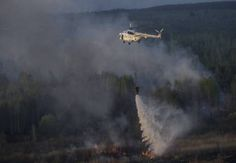 In an exclusion zone the fire on the area of 20 hectares was extinguished by more than one hundred rescuers, the helicopter and planes