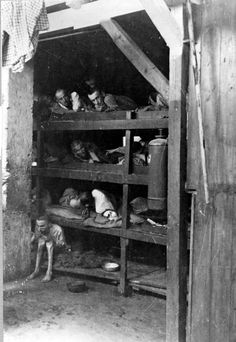Prisoners at a concentration camp. The beds were infested with lice and vermin. The stench inside was so formidable few guards would venture inside.