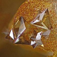 Eulytine crystals - Schneeberg, Erzgebirge, Saxony, Germany