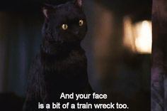 When he dropped mad truth bombs. | 24 Times Salem The Cat Was All About The Sass