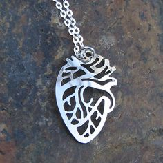 "Give your heart to someone! This anatomically correct depiction of the heart is gold or rhodium plated and measures about 1"" from top to bottom. It is gently curved to add dimensionality and hangs del"