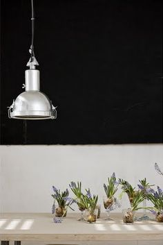industrial light with contrasting backdrop = $
