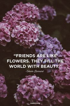 10 Cute Friendship Quotes - Short Sayings About Friendship flower quotes 10 Inspiring Quotes to Share With Your Best Friends Short Flower Quotes, Beautiful Flower Quotes, Flower Qoutes, Beautiful Flowers, Best Friends Forever Quotes, Best Friend Quotes Meaningful, Short Friendship Quotes, Friendship Flowers, Bff Quotes