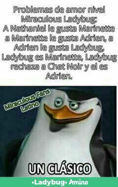 Les falta a chloe le gusta Adrien Miraclous Ladybug, Memes Chistosisimos, Funny Memes, Mlb, El Humor, Miraculous Ladybug Memes, Lady Bug, Love Bugs, Chiste Meme