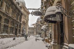The famous restaurant Negresco Bucharesti in Bucharest #restaurant #negrescobucharesti #instagram #blog #parkinn #travel #wanderlust #romania