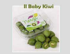 nergi: il baby kiwi http://pilloline.altervista.org/nergi/#
