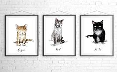 Couleur personnalisée Portrait animaux Illustration par Designxiety