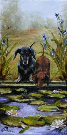 """Curious""  Dachshund Rescue Dogs | Stella Violano"