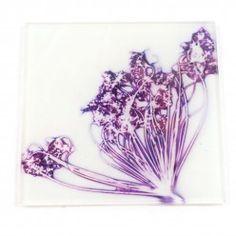 Gillian Arnold Fennel Love White Glass Coaster