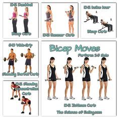 """They may not be the biggest or the strongest muscle group on your body, but your biceps are pretty much the best """"show"""" muscles, and there are a dizzying array of movements to bring out every vein, bulge, and peak."""