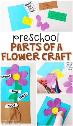 Preschool: Plants It was 50 degrees here in Wisconsin today, which basically means it's time to brea Letter G Activities, Preschool Learning Activities, Preschool Curriculum, Preschool Themes, Spring Activities, Preschool Crafts, Spring Preschool Theme, Preschool Flower Theme, Art Activities For Preschoolers