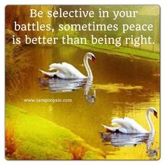 Be selective in your battles, sometimes peace is better than being right.