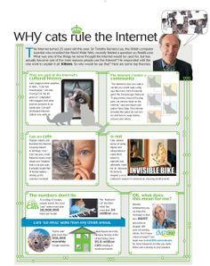30 million google searches can't be wrong: Cats rule the Internet.