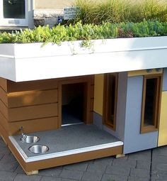 Cat or Dog house with garden beds on top (space saver)