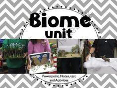 Biomes of the World (Powerpoint, Notes, Test, and Fun Activities) from Free to Teach on TeachersNotebook.com (42 pages)  - Biomes of the World (Taiga, Tundra, Tropical Rainforest, Desert, Deciduous Forest, and Grasslands