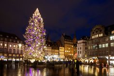 The Christmas tree during the festive market at the Place Kleber in Strasbourg, France.