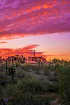 9 Experiences To Have In Phoenix, Arizona - Eatlivetraveldrink New Orleans, New York, Arizona Road Trip, Arizona Travel, Arizona City, Places To Travel, Places To See, Travel Destinations, Las Vegas