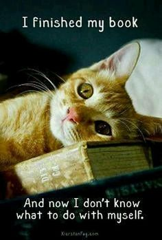 Anyone else feel like this when they finish reading a book?