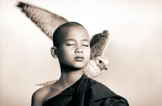 Harmony with animals. Photographic works by Gregory Colbert.