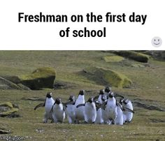 Freshman on their first day of college