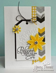 Creative Palette: Black, Yellow and White All Over - Nancy Thomas