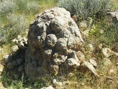 Orbicular Granite/Feldspar Boulder