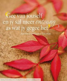 Really red, really pretty. Afrikaanse Quotes, Cheer You Up, Printable Quotes, Dear God, Cute Quotes, Woman Quotes, Live Life, Qoutes, Van