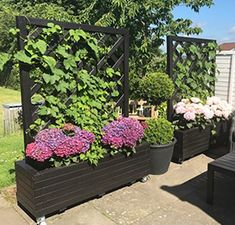 Sloped Garden, Container Gardening, Planters, Exterior, Patio, Flowers, Pergola, Decor, Projects