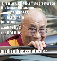 """""""Life is as dear to a mute creature as it is to man. Just as one wants happiness and fears pain, just as one wants to live and not die, so do other creatures."""" – His Holiness The Dalai Lama"""